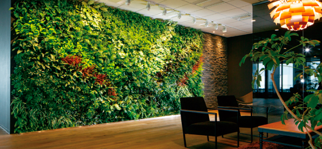 greenwall-section1-img1_2
